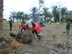 ouders en docenten maken de bouwplaats schoon